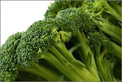 Broccoli-bsp copy